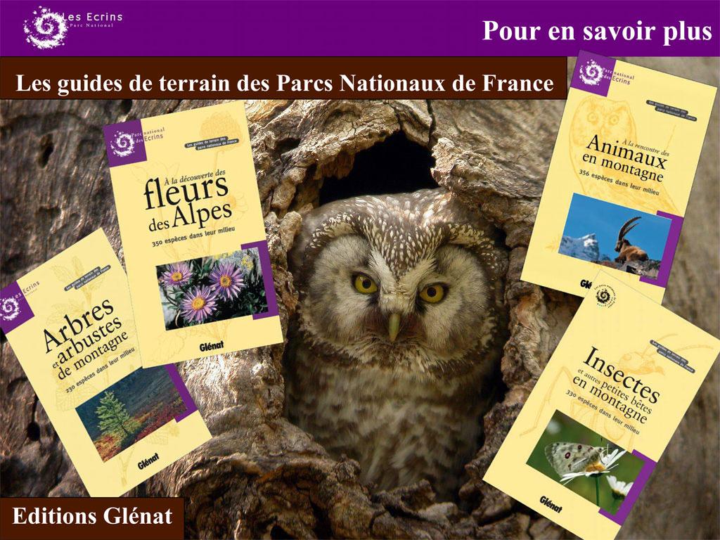 Au salon du randonneur lyon parc national des ecrins for Salon du randonneur lyon