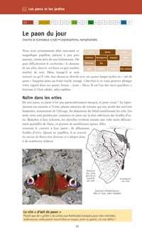 2009-06-interieur-livre