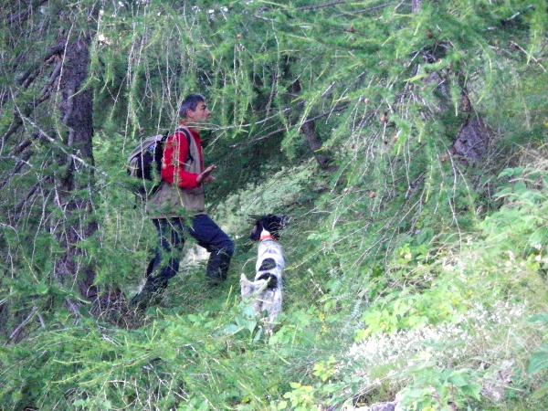 2010-08-comptage-chien-02