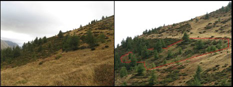 2012-10-zone-debroussaillee