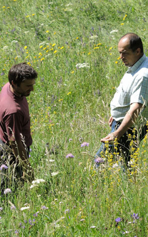 2013-06-prairie-fleuries295