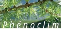 2010-01-phenoclim