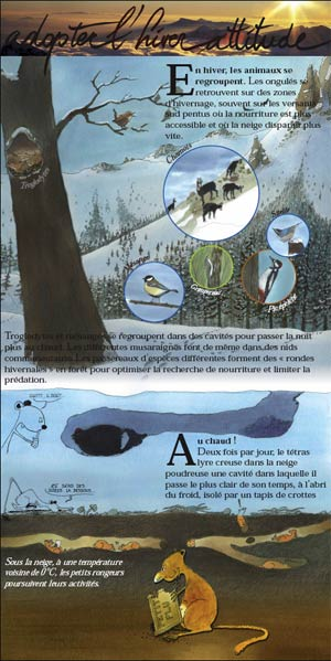 2010-02-expo-hiver