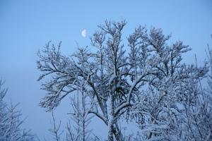 2009-10-sejours-hiver-03