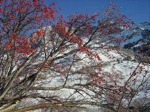 2009-10-sejours-hiver-05