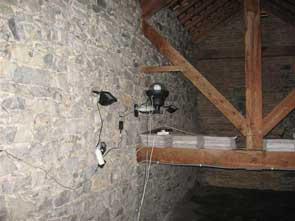 2010-09-video-chauve-souris