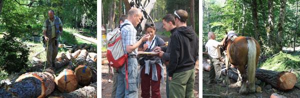 2011-09-foret1-bando1