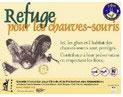 refuge-chauve-souris