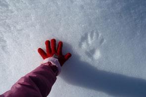 14-jd-champ-hiver2-295