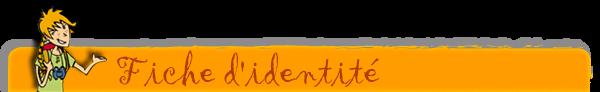 jd-fiche-identite