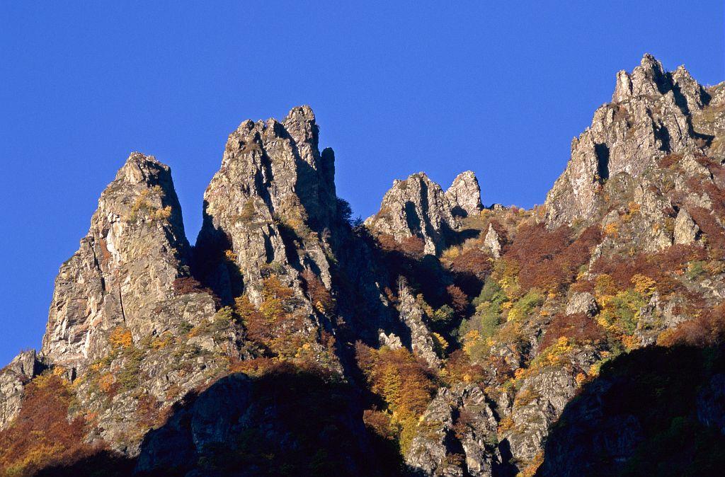 L'Etillier - Entraigues © Jean-Pierre Nicollet - Parc national des Ecrins