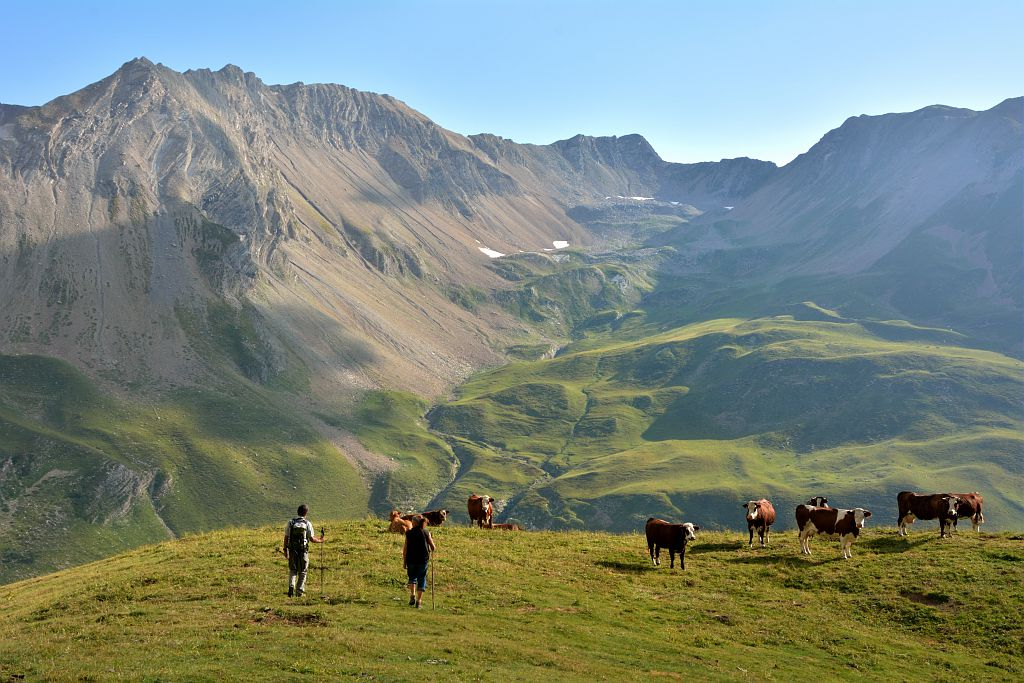 Pastoralisme - Garde moniteur et bergère sur l'alpage de Chargès - Réallon ©Mireille Coulon - Parc national des Ecrins