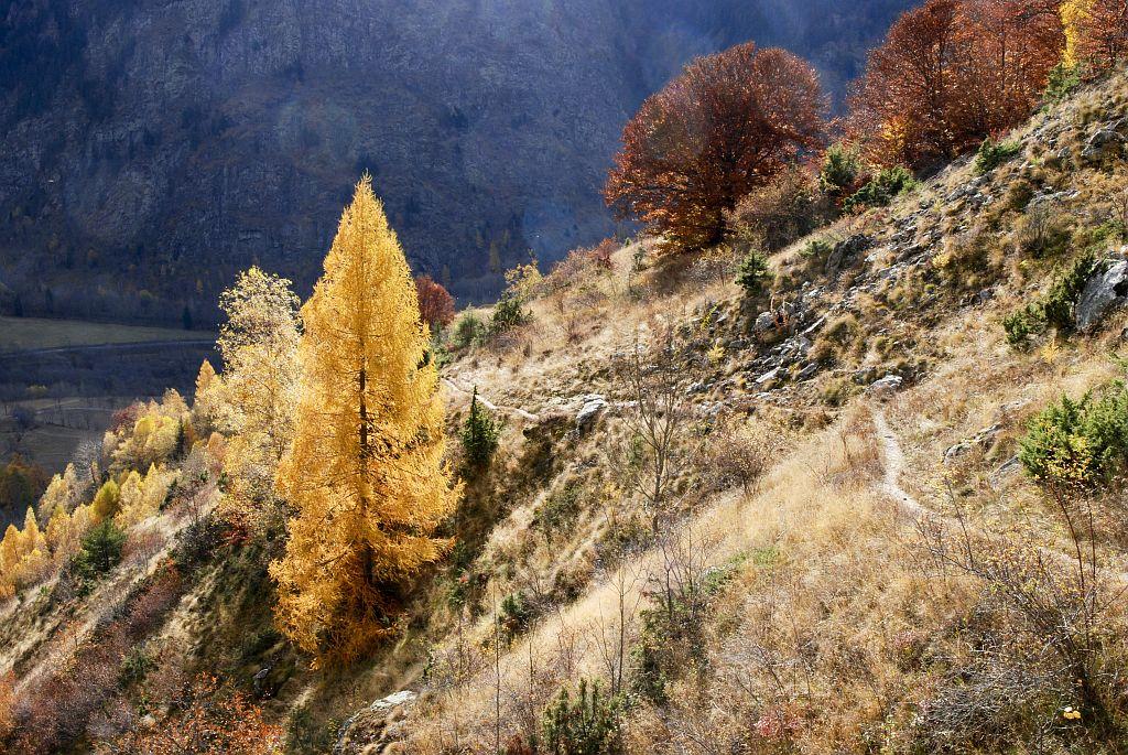Randonnée pédestre à l'automne depuis Saint-Maurice vers la cabane de la Salette et la cabane de Rochimont.©Dominique Vincent - Parc national des Ecrins