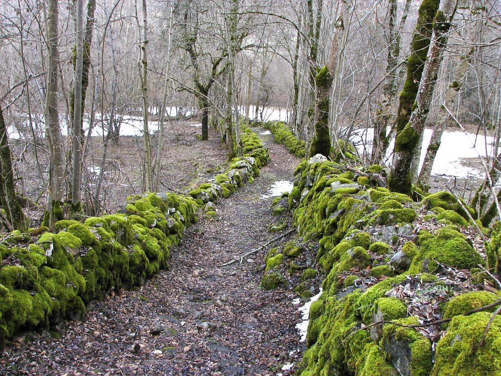 Sentier de la Danchère aux Escallons, bordé de pierres et murets ©Albert Christophe - Parc national des Ecrins