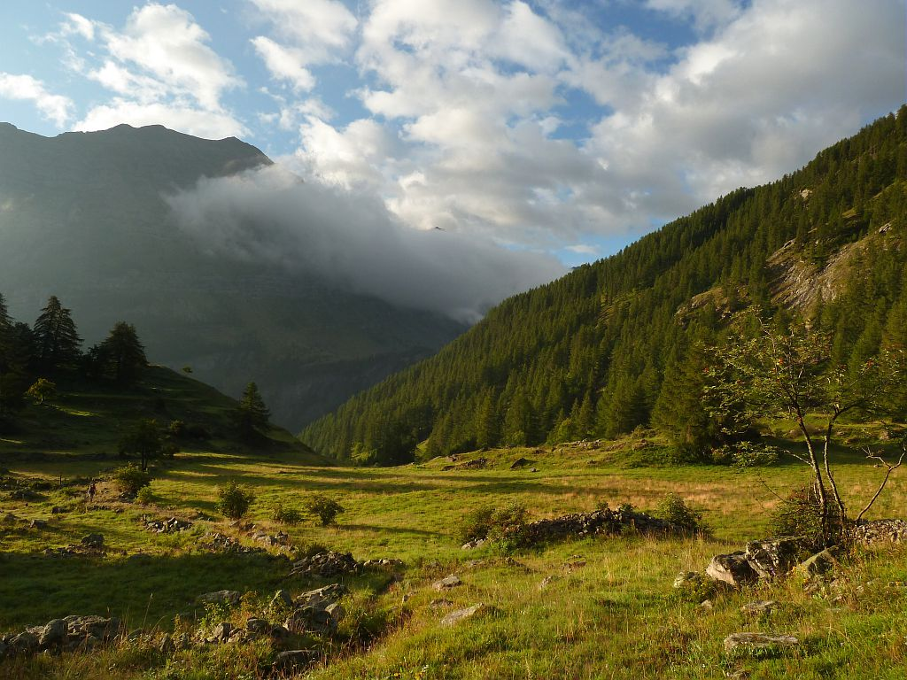 Dormillouse - L'Ardouin ©Blandine Delenatte - Parc national des Ecrins