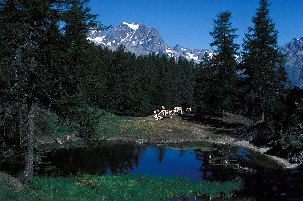 Le lac des Charbonnières © Christian Baïsset - Parc national des Ecrins