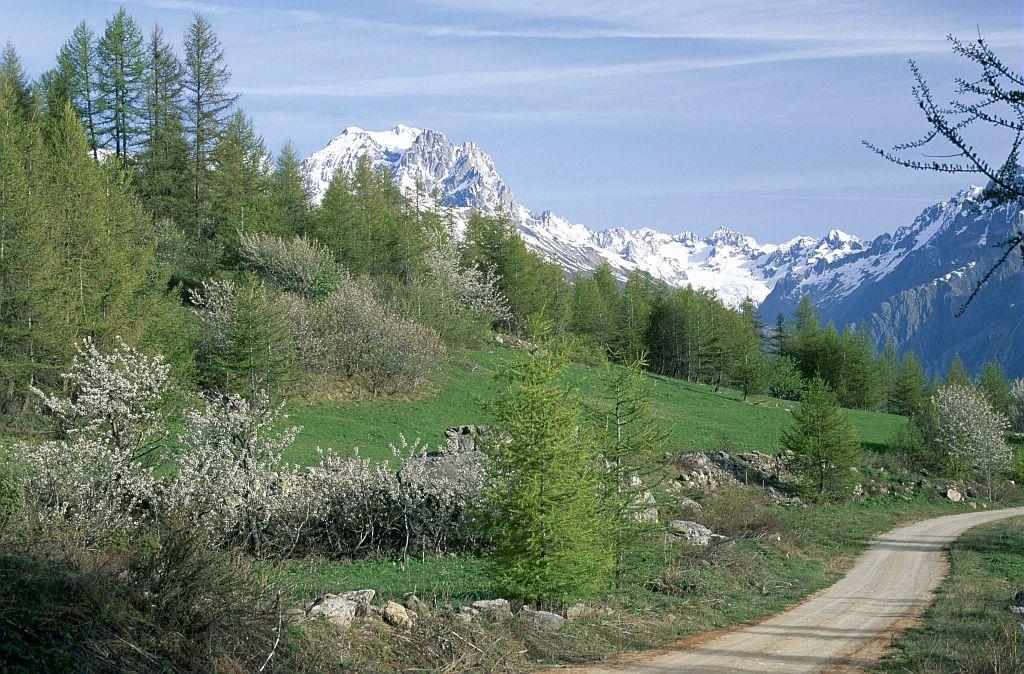 Le Pelvoux depuis la piste de la Pousterle, Puy St Vincent ©Chevalier Robert - Parc national des Ecrins