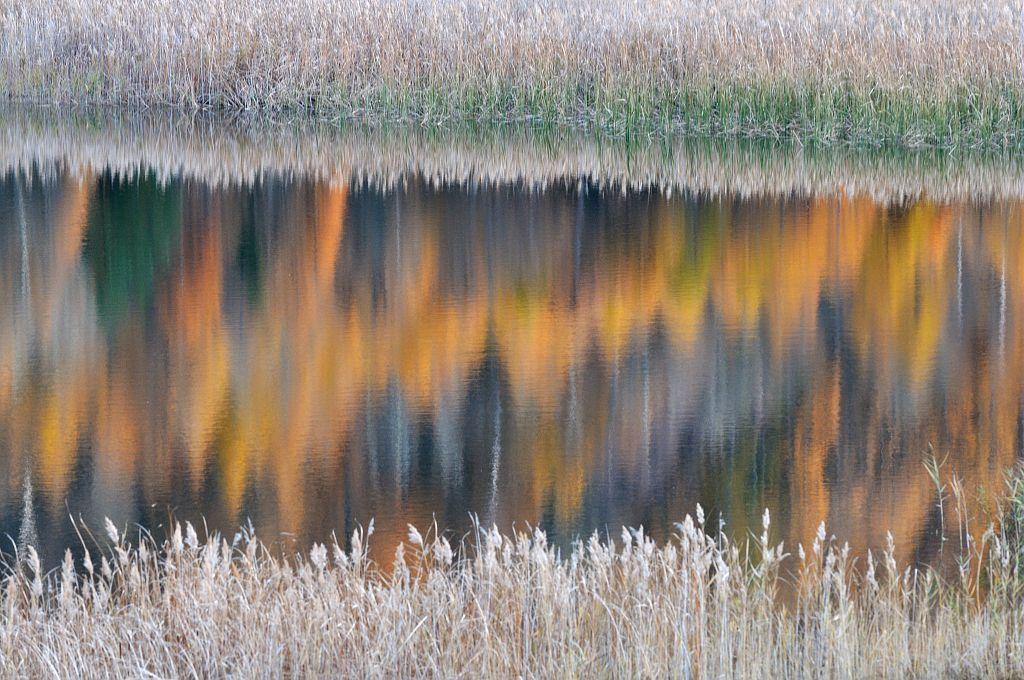 Reflets sur le lac de Siguret © M.Coulon - Parc national des Écrins