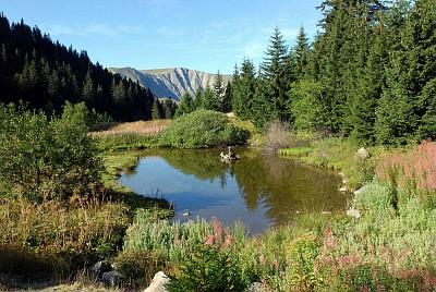 Lac de Prévourey sur le plateau du Taillefer - © B.Nicollet - Parc national des Écrins