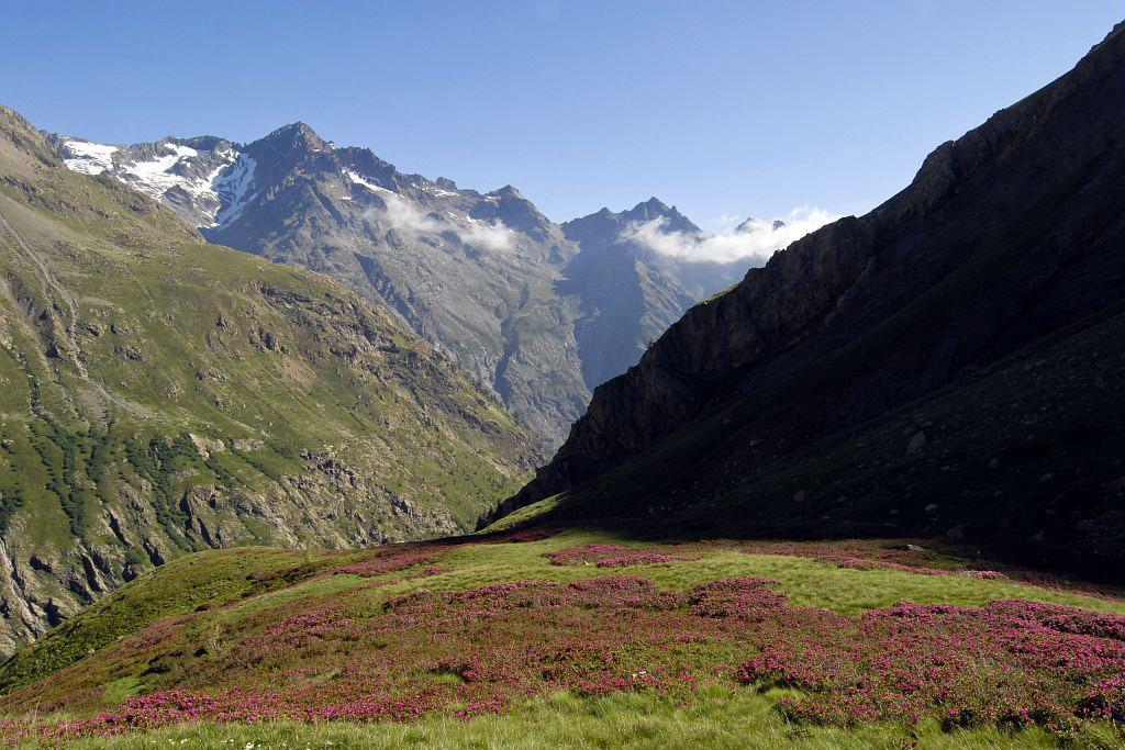 Le vallon de Chanteloube, au fond la pointe et collet du Rascrouset © PNE / Coulon Mireille