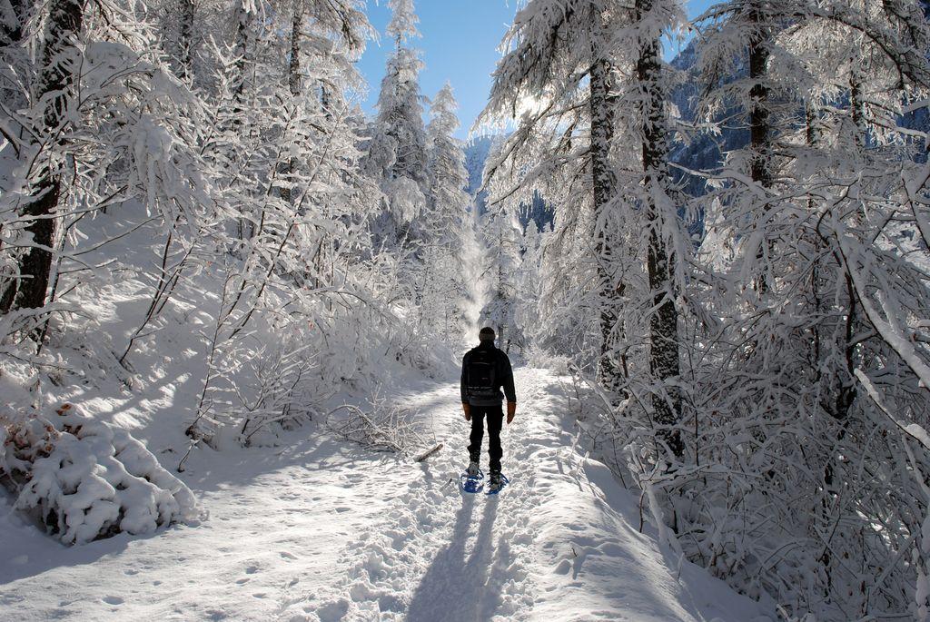 Randonner l 39 hiver parc national des ecrins - L escargot en hiver ...