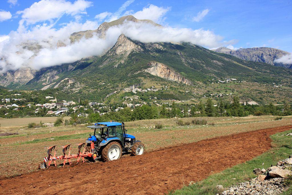 Labours sur le plateau de Fontmolines à Châteauroux les Alpes © Michel Bouche - Parc national des Ecrins