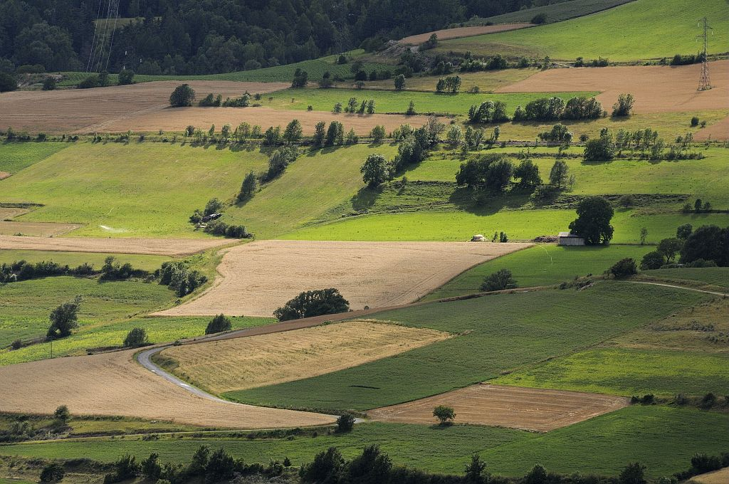 Paysage cultivé - Châteauroux © Mireille Coulon - Parc national des Ecrins