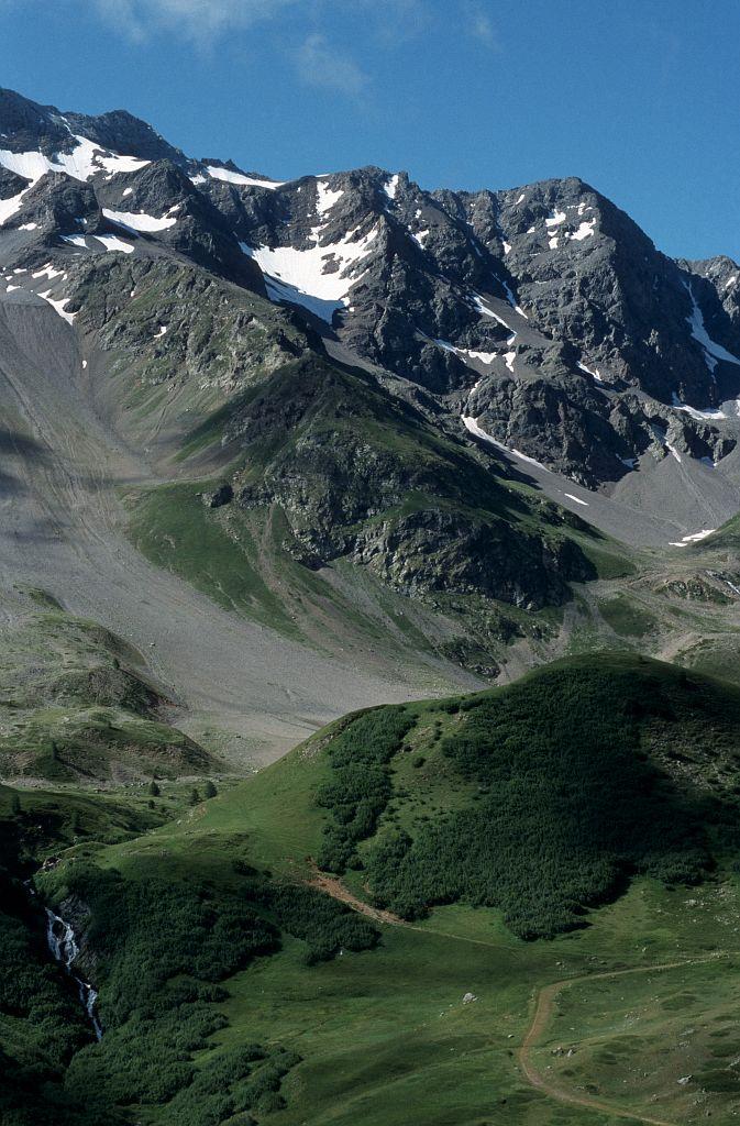 L'aulnaie verte vers la source de la Guisane © Bernard Nicollet - Parc national  des Ecrins