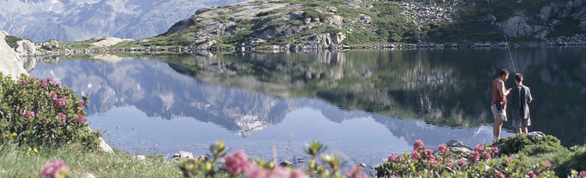 Lac Pétarel - © Daniel Roche - Parc national des Écrins