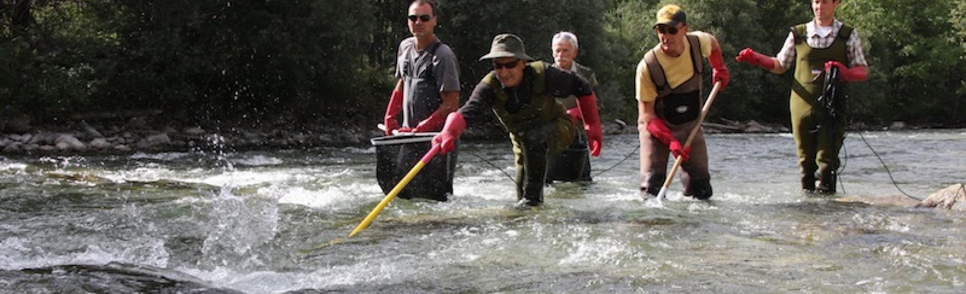 pêche électrique - © fédération de pêche 05