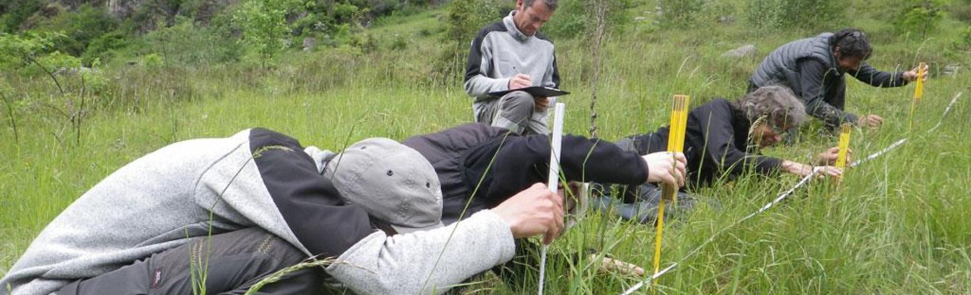 Calage mesures biomasse végétale - © Leïla Thouret - Parc national des Écrins