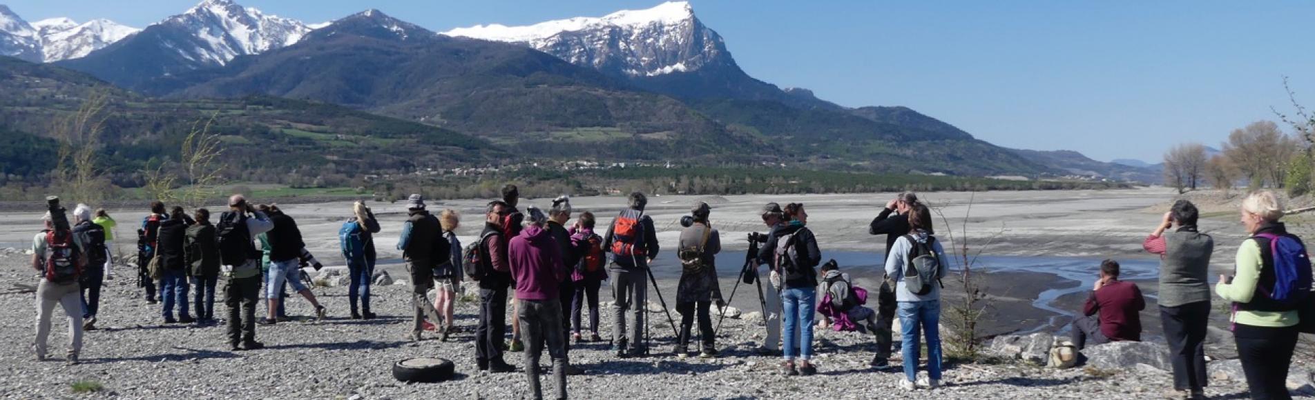 sortie migrateurs - avril 2018 - Parc national des Écrins - © Jean Paul Coulomb