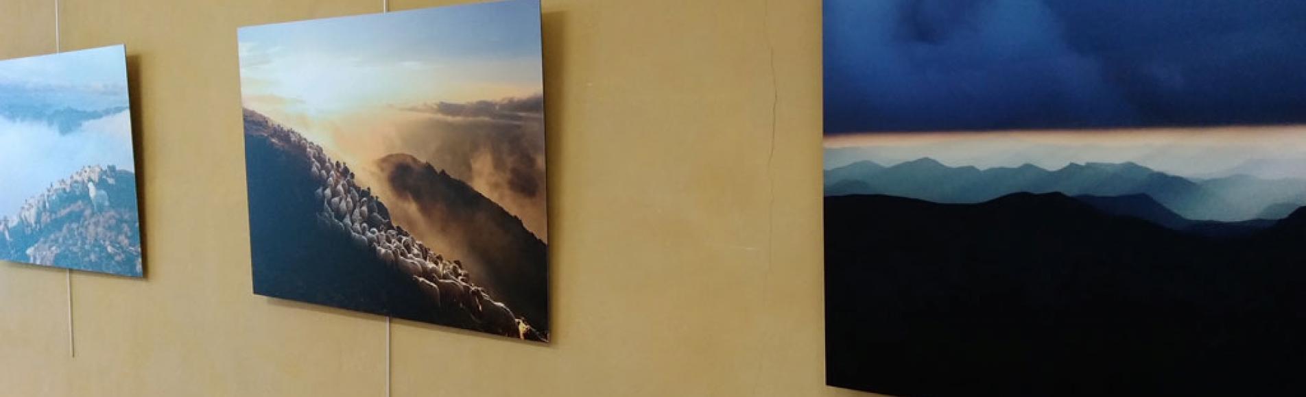 Exposition photos Eric vallée, ambiances en alpage - 2020 - Maison du Parc national des Écrins  Embrunais - ©