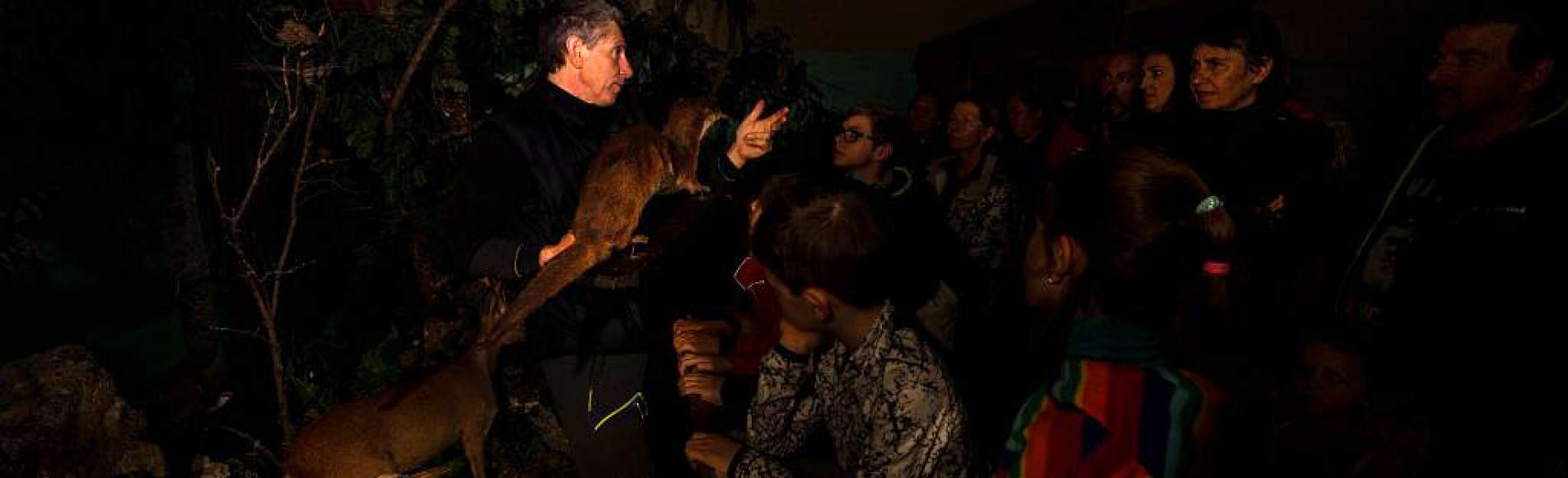 Loutre empaillée - Animation en nocturne par le PNE - Refuge des animaux - Saint-Léger les Mélèzes © T.Maillet - Parc national des Ecrins