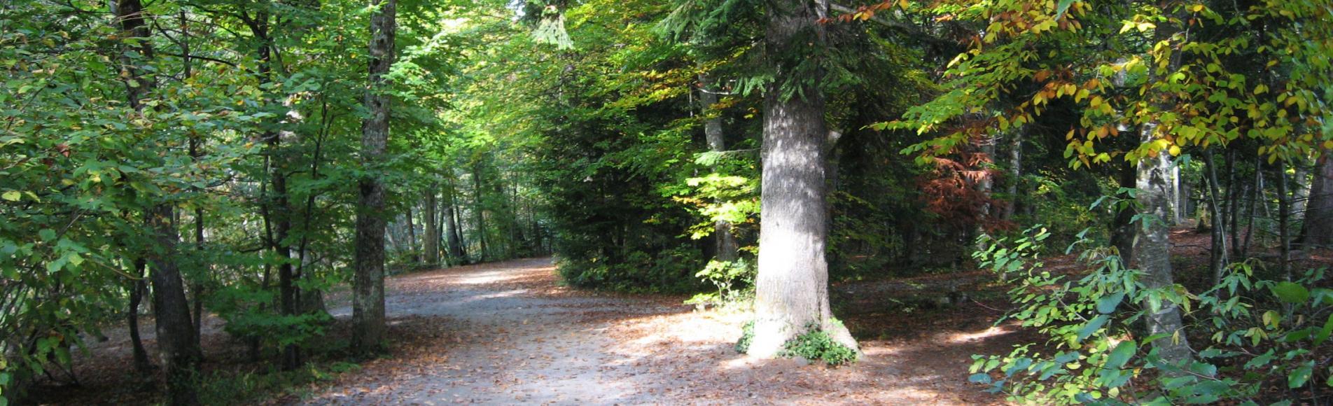 Domaine de Charance à l'automne © Hélène Belmonte - Parc national des Ecrins
