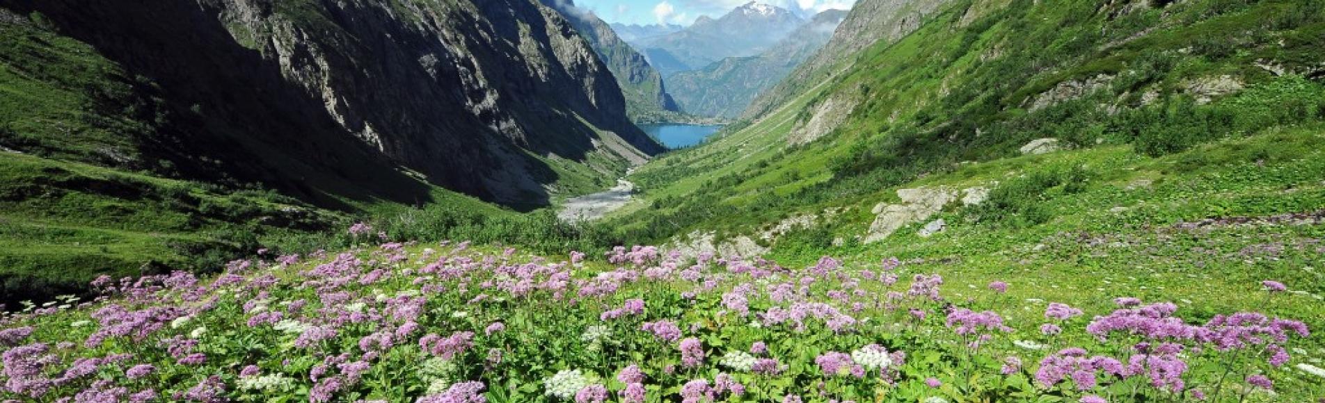 Vue sur le Lauvitel depuis la réserve intégrale ©PNE