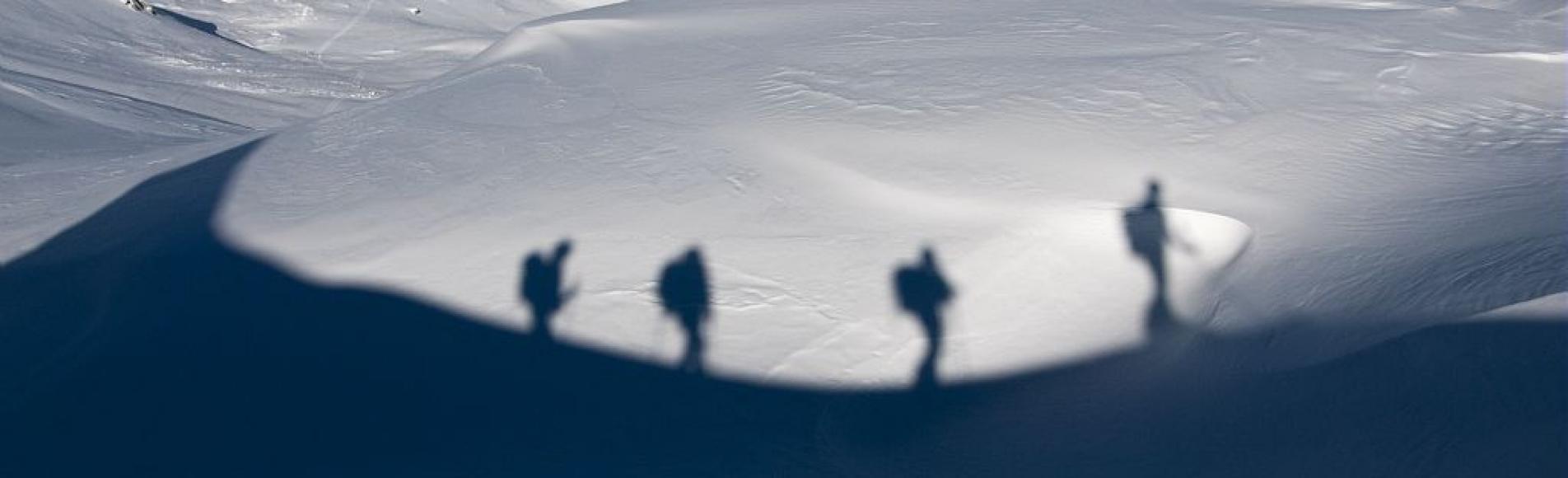 Skieurs de randonnée en ombre portée dans le vallon de la Pousterle ©Mireille Coulon - Parc national des Ecrins