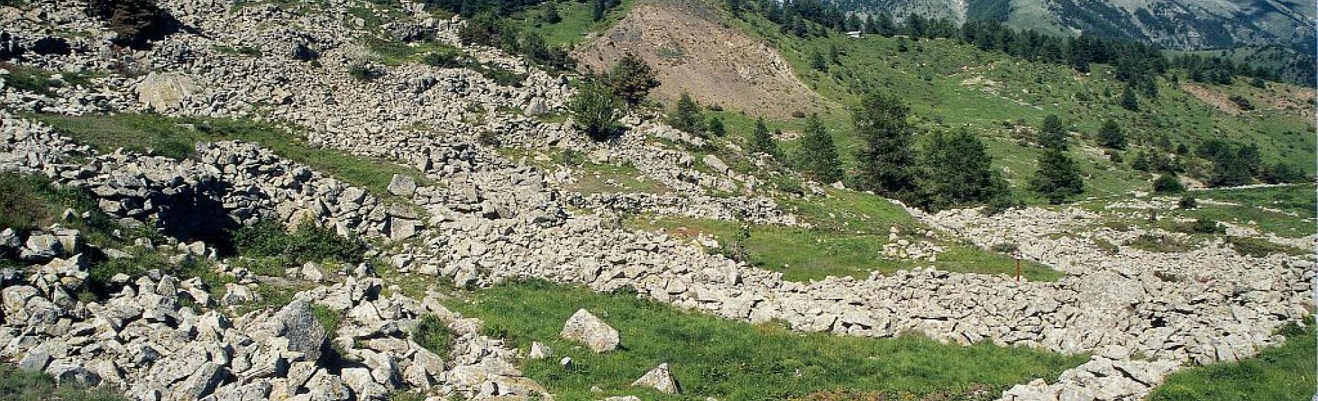 Faudon - les murets et les clapiers d'épierrement ©Marc Corail - Parc national des Ecrins