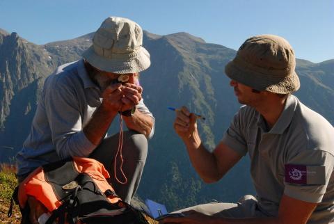 Observer, déterminer -© C.Albert -Parc national des Ecrins