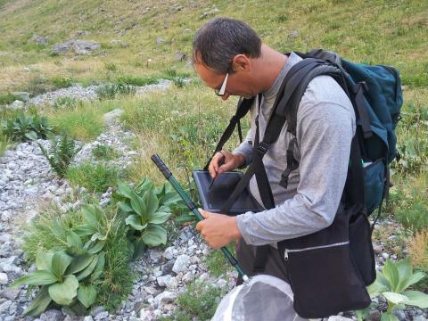 Flavia -Inventaire ATBI  Lauvitel -Parc national des Ecrins