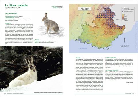 monographie lievre atlas 2016