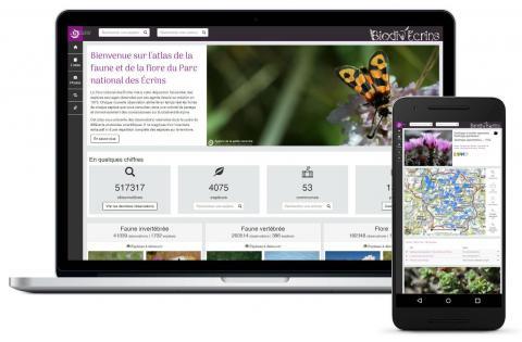 Biodiv'Ecrins -atlas en ligne faune et flore Parc national des Ecrins