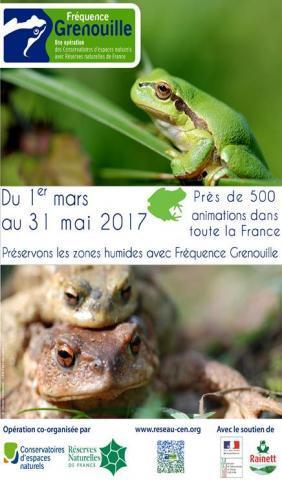 Affiche Fréquence Grenouille 2017