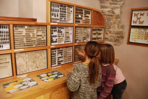 Musée St léger les mélèzes