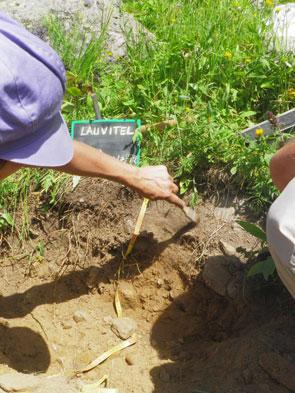 archeo étude des sols Lauvitel - 2012