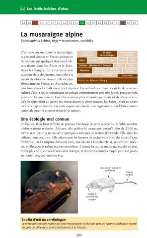 """La page concernant la musaraigne alpine dans le livre """"A la rencontre des animaux en montagne"""""""