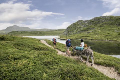 Randonneurs sur le Tour du Taillefer © Carlos Ayesta - Parc national des Ecrins