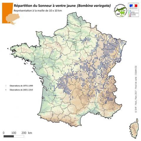 répartition sonneurs à ventre jaune en France