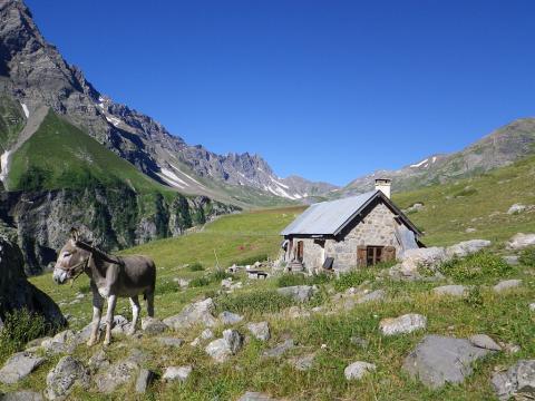 Cabane de la balme sur l'alpage grande cabane © C.Sagot - Parc national des Écrins