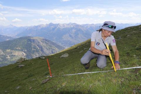Relevé alpage Crouzet sur le quartier d'août © M.Bouvier - Parc national des Écrins